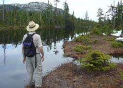 An ancient lake surrounded by Old growth - This is Spirit Lake